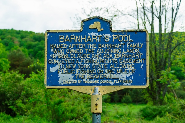 Barnhart Pool, Beaverkill, New York