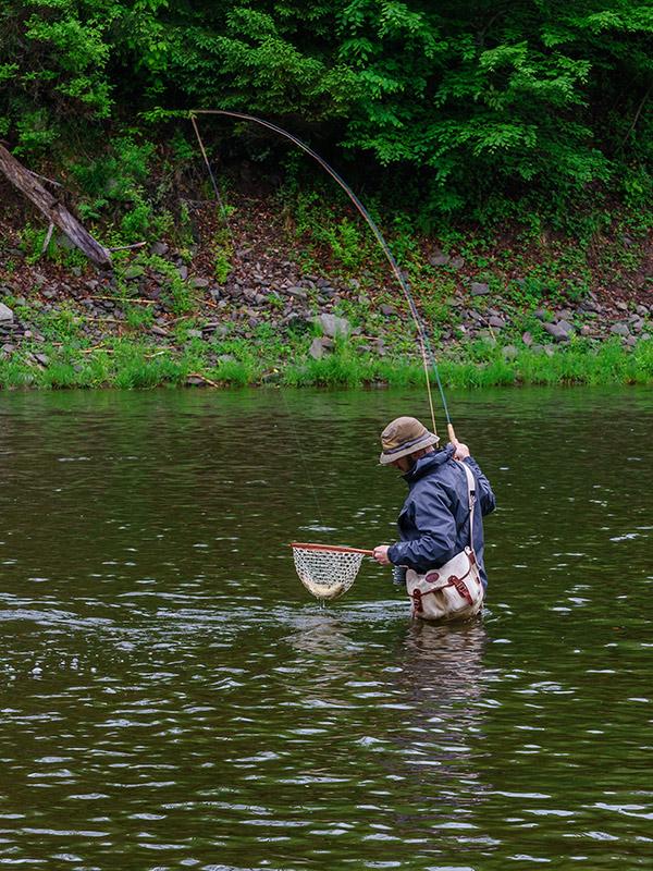 Catching Trout, Willowemoc, New York