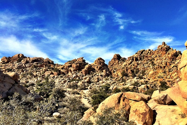 Joshua Tree National Park, Palm Springs, California