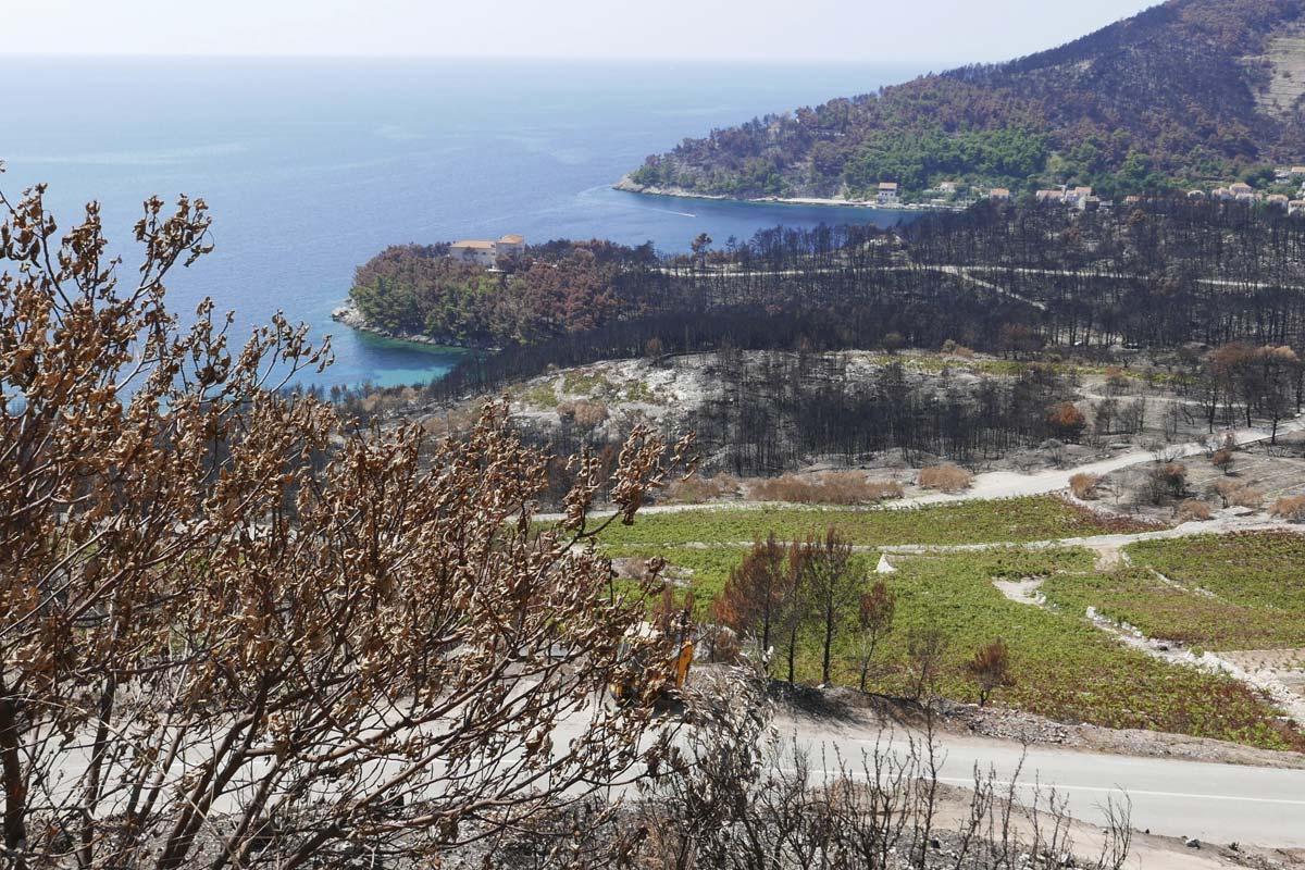 Peljesac Fire landscape, Croatia