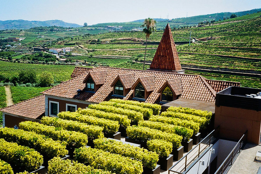 Vineyard, Six Senses Douro Valley, Portugal