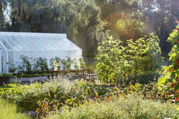 Greenhouse at Rosendals Trädgård, Stockholm.