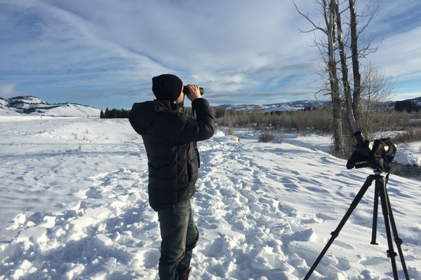 Searching for moose at Grand Tetons National Park