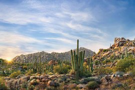 Brown's Ranch, McDowell Sonoran Preserve, Scottsdale, Arizona