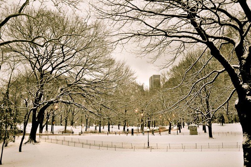 New York, Central Park February 2008