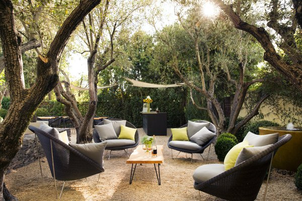 Lush outdoor common space at Hotel Healdsburg in Healdsburg, California