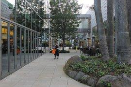 T-Site shop courtyard