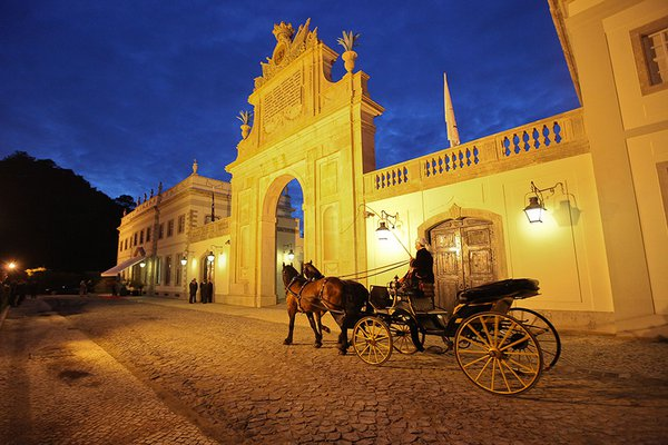 Tivoli Palácio de Seteais hotel exterior