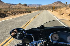 Babes Ride Out, Joshua Tree