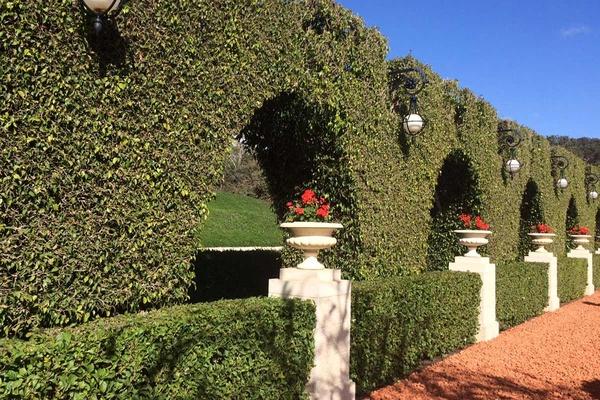 Bahai Garden column