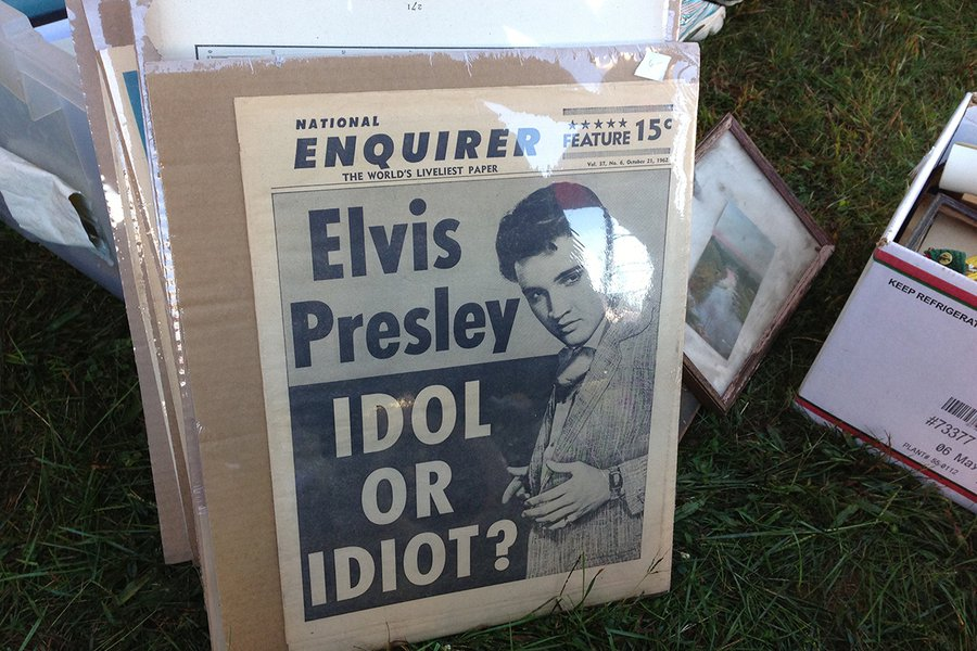 Elvis: Idol or Idiot?
