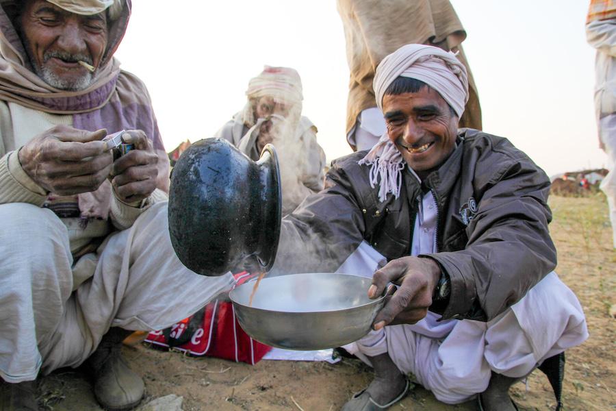 Pouring camel milk chai