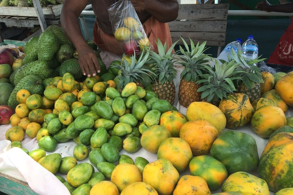Castries Market Mangos
