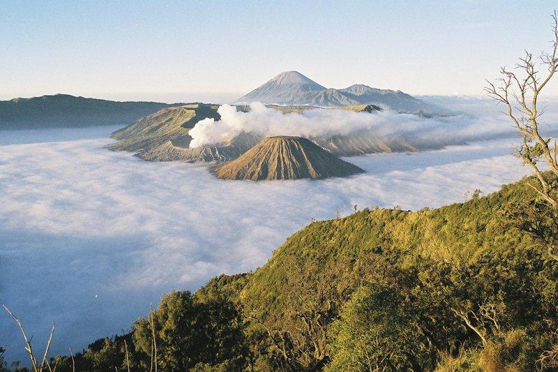 Java, Indonesia (2009)