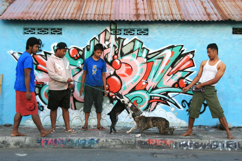 Jogjakarta, Java, Indonesia (2009)