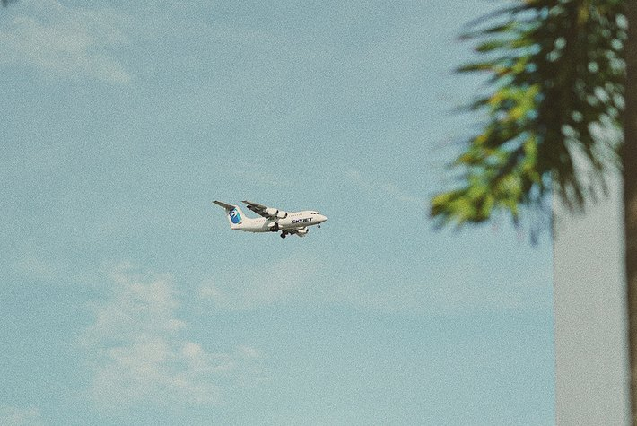 Summer flight - Photo by Chelson Tamares.