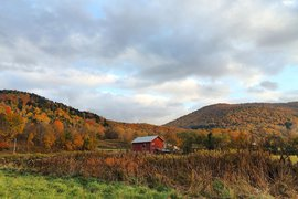 Echo Orchard in the Catskills.