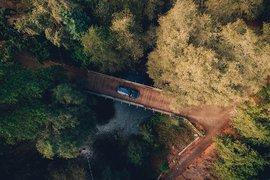 Green Road Trips