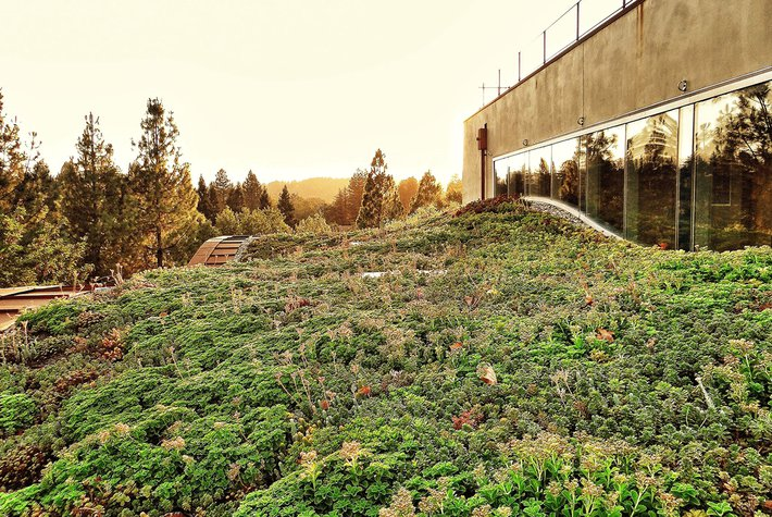 Outdoor living roof at the H2H hotel in Healdsburg, California