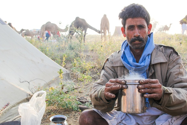 Hot camel milk chai
