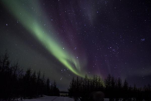 Iceland - Boreal Lights