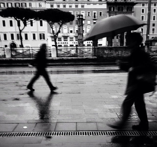 Photo by @mattgeo.