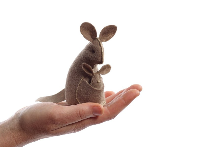 Pocket-Size Kangaroo Kit