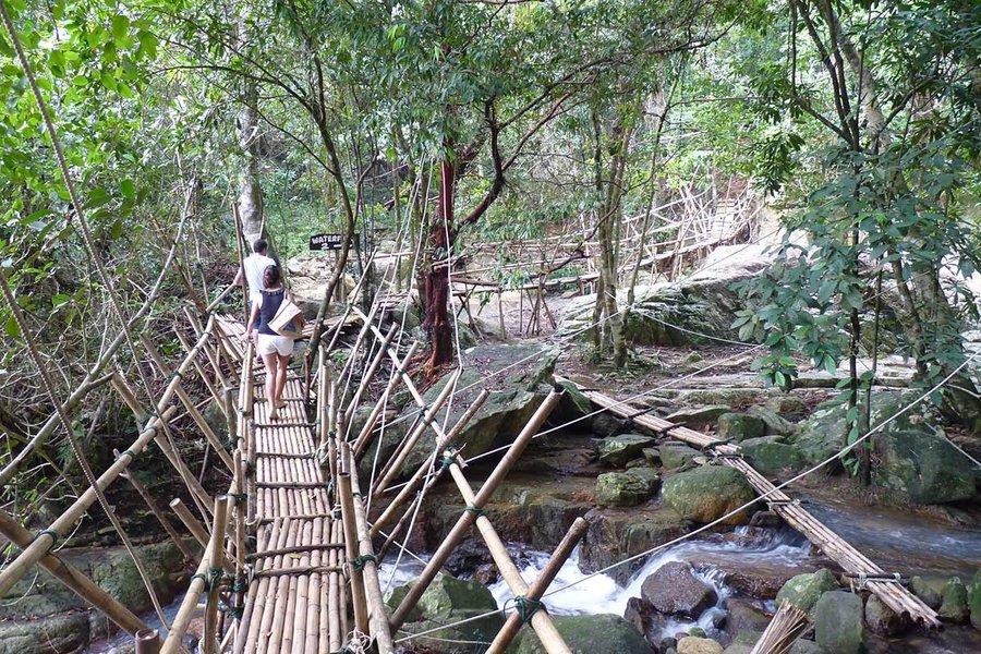 The Bridge to the Waterfall