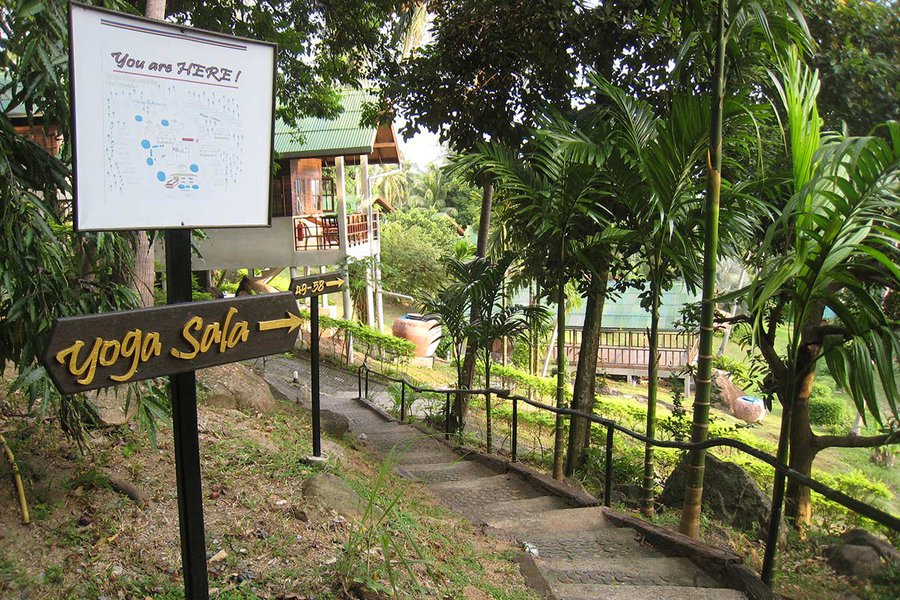 The Path to the Yoga Sala