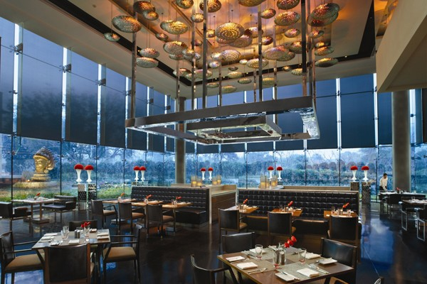 The Qube - All Day Dining Restaurant