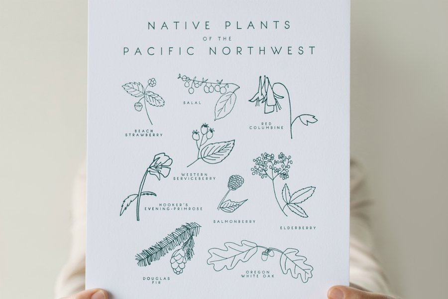 Native Plants of the Pacific Northwest Botanical Letterpress Art Print