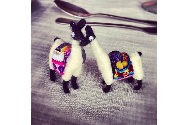 Two small llama magnets from the Atacama Desert, Chile.