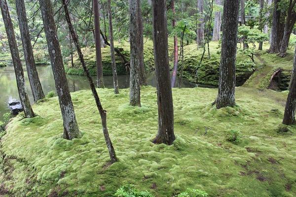 Sanjūsangen-dō in Kyoto
