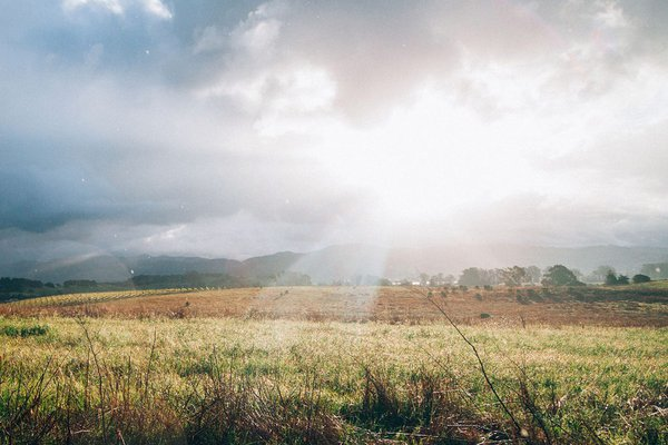 Napa Valley by Jesse Gardner