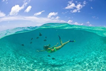 Woman diving in the ocean. Photo courtesy of Oceans Edge Resort and Marina.