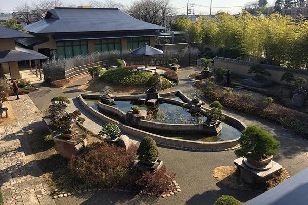 Omiya Bonsai Museum in Tokyo, Japan
