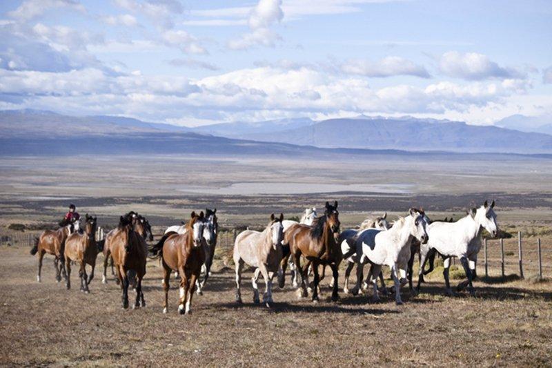 Photo: Courtesy of Tierra Patagonia