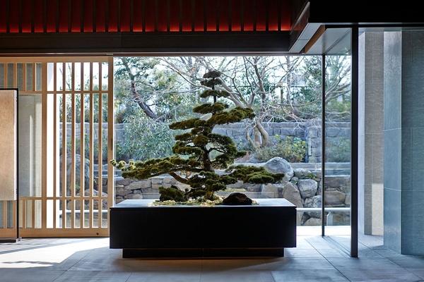 Ritz-Carlton, Kyoto Bonsai Tree