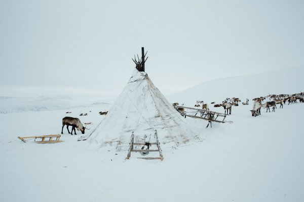 Reindeer Expedition with Intrepid in Siberia