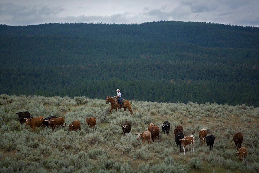 Big Sky Country, Montana