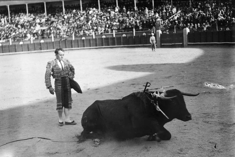 the sun also rises bullfighting scenes essay Why should you care about bulls and bull-fighting in ernest hemingway's the sun also rises we have the answers here, in a quick and easy way.