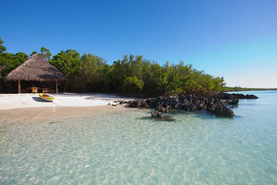 Photo: Courtesy of Vamizi Island