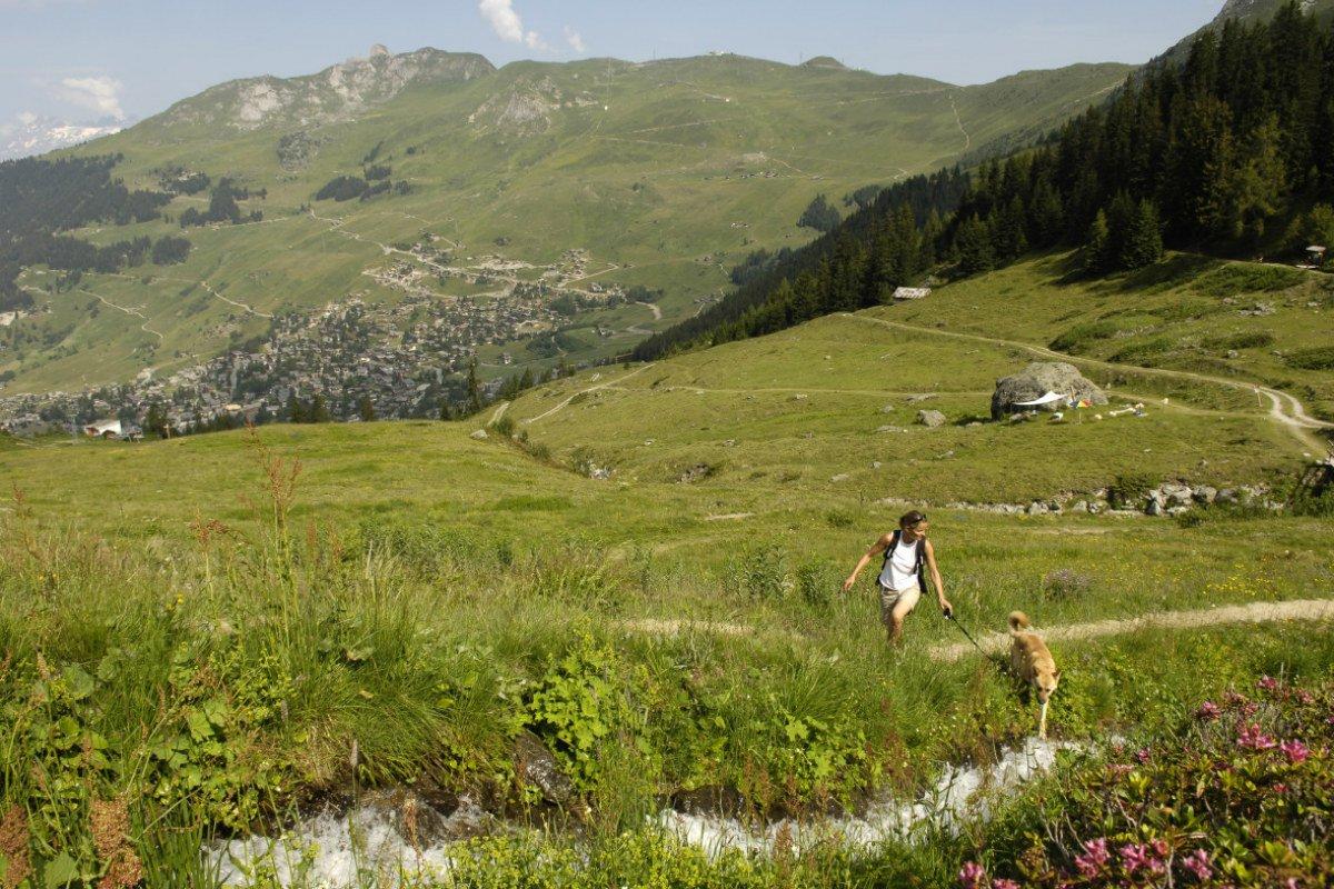 Bisse du Levron, Verbier Switzerland.