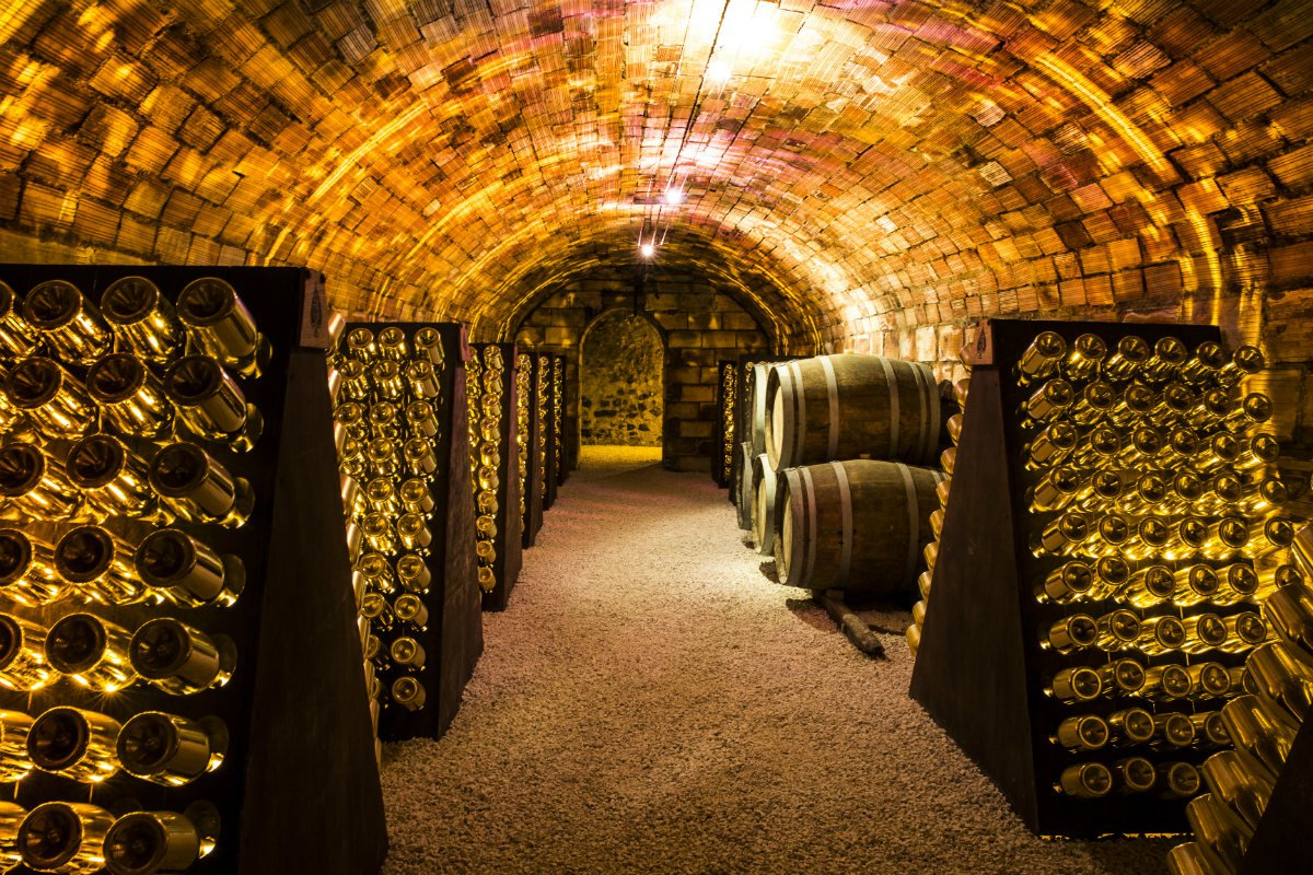 Armand de Brignac vineyard cellar