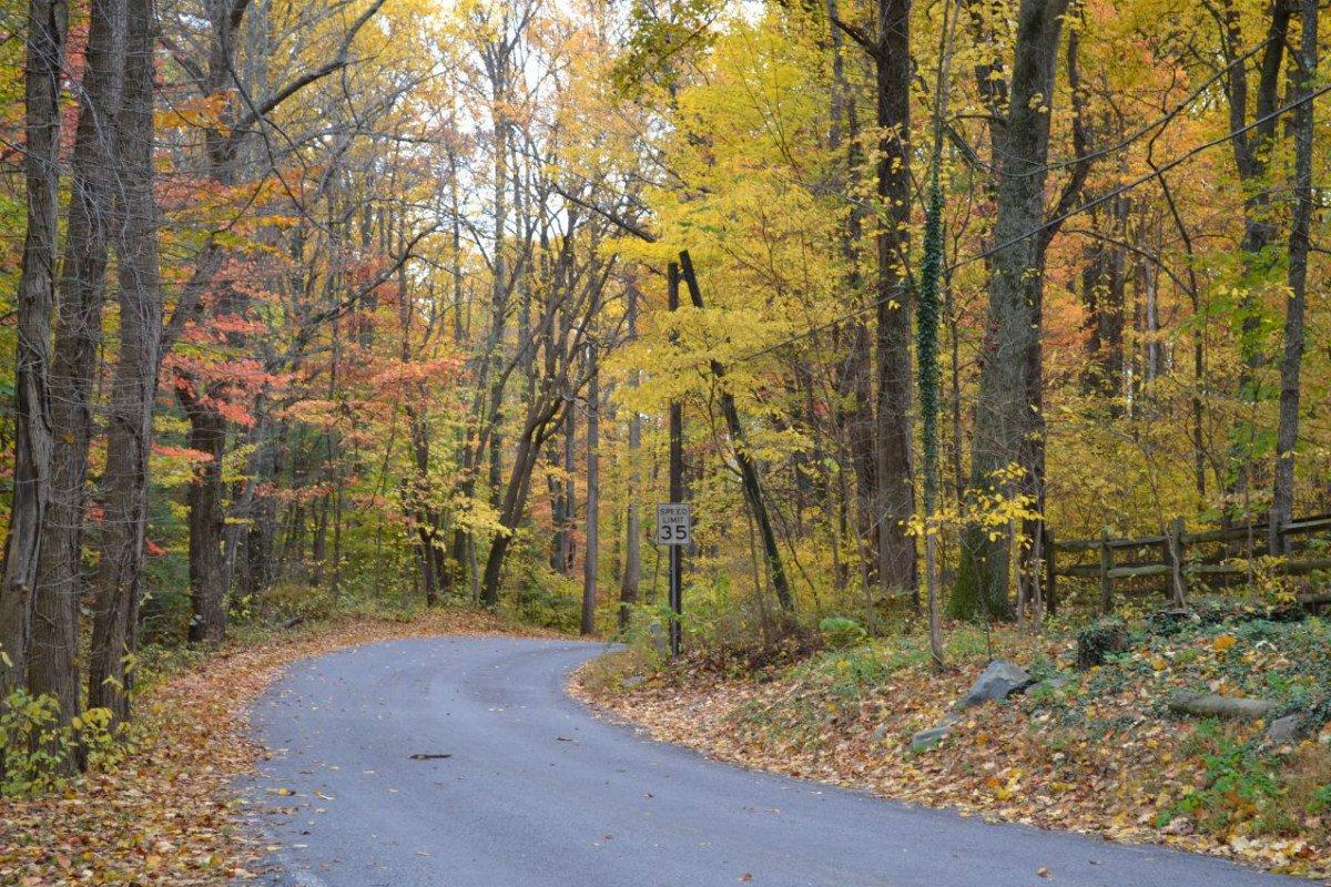 Fall foliage in Gettysburg, PA