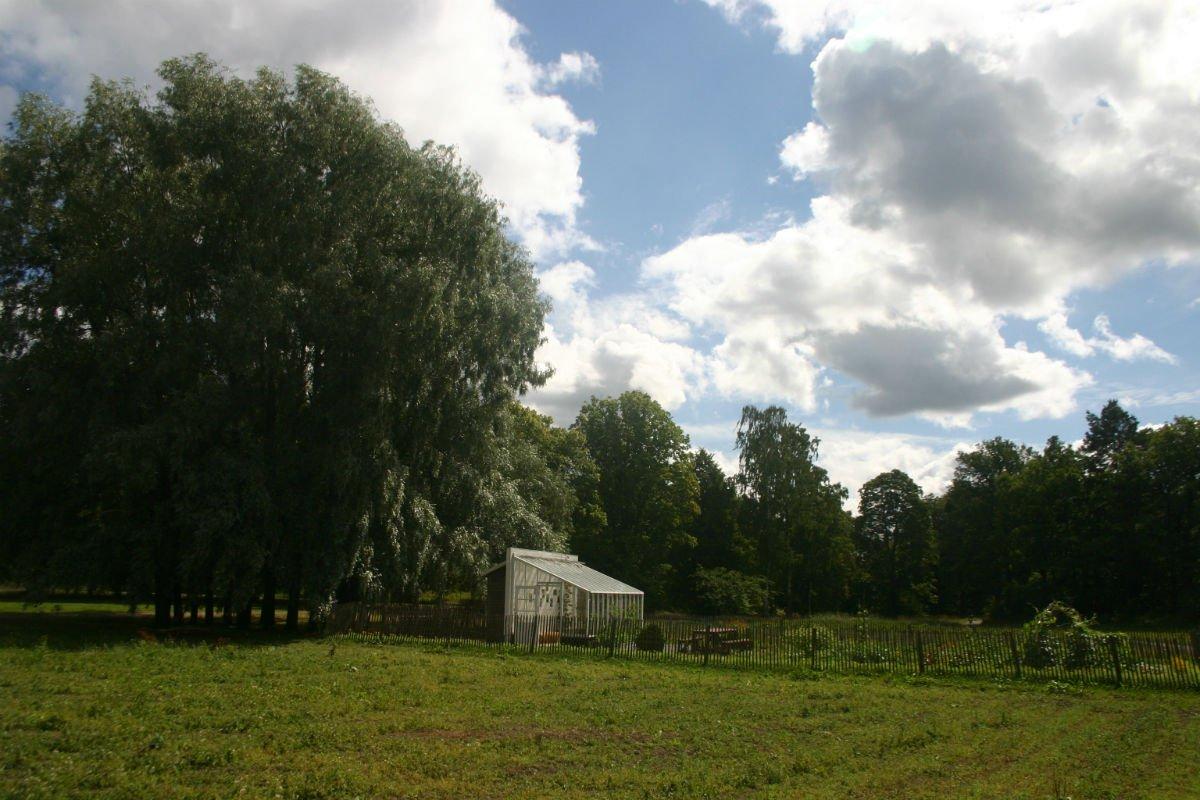 Greenhouse at Rosendals Tradgard, Stockholm