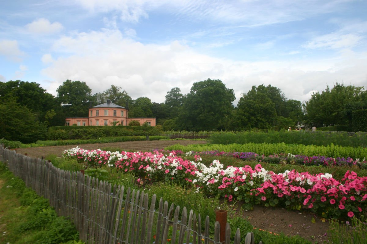 Pink and white flowers at Rosendals Tradgar, Stockholm