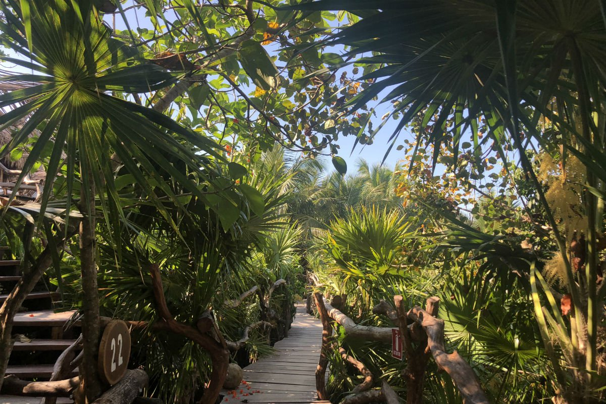 Wooden boardwalk, Azulik, Tulum, Mexico.