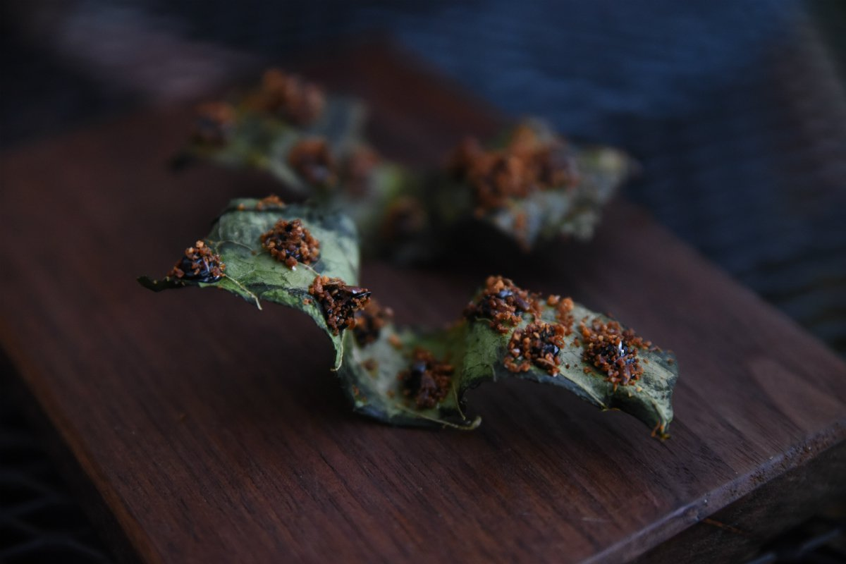 Smoked kale leaves at Willows Inn