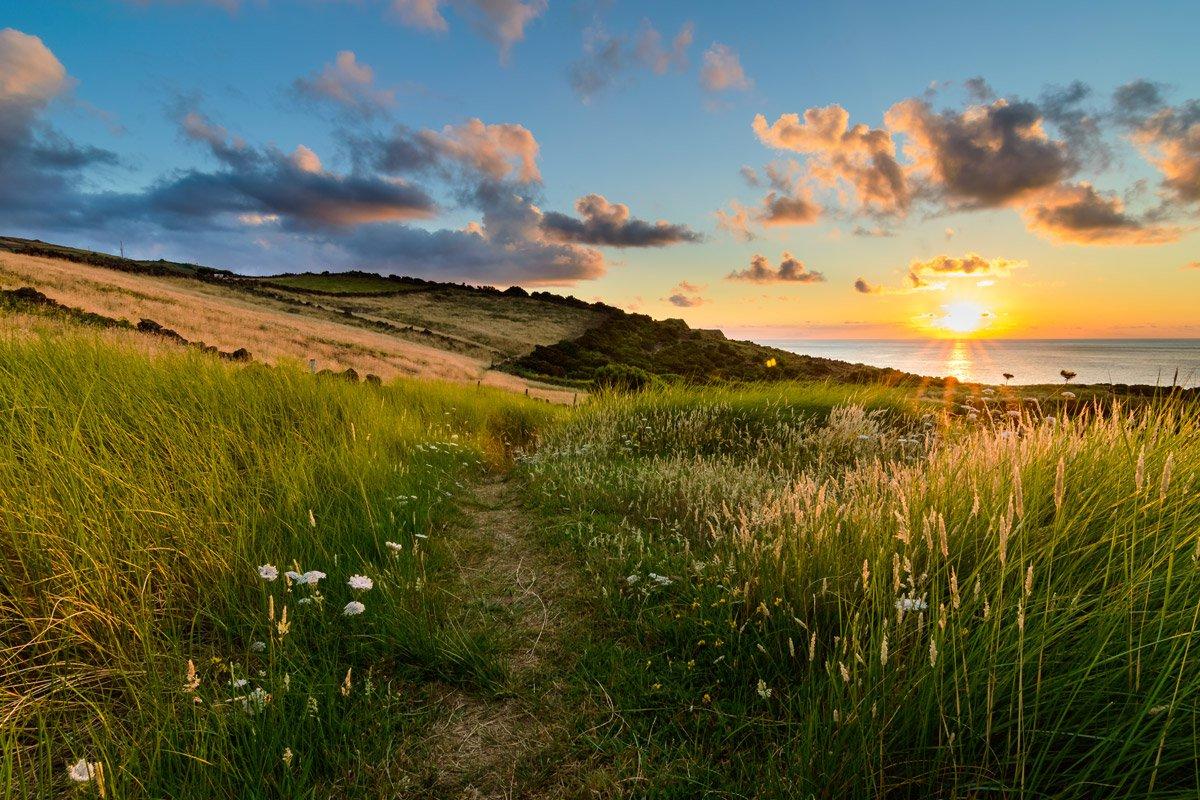 Quatro Ribeiras, Terceira Island, the Azores.